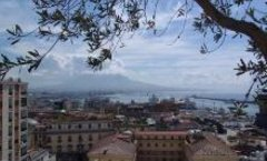 SI Mediterranean Committee meets in Naples